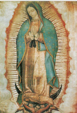 nd-guadalupe